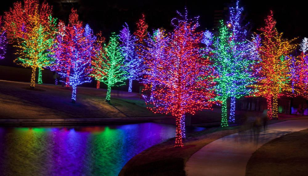 Las luces LED podrían ser de gran ayuda al sector de la agricultura