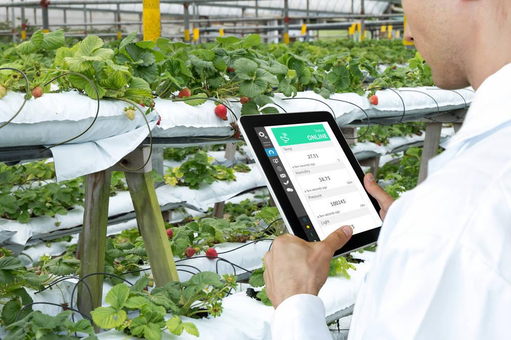 Nuevas tecnologías de cultivo. La agricultura de precisión